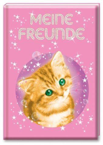 Gebundenes Buch »Zauberkätzchen - Meine Freunde«