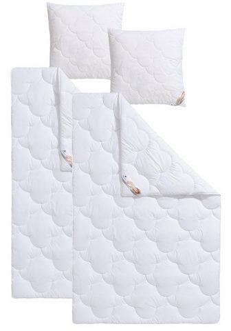 TRAUMECHT Antklodė iš mikropluošto + pagalvė »Mo...