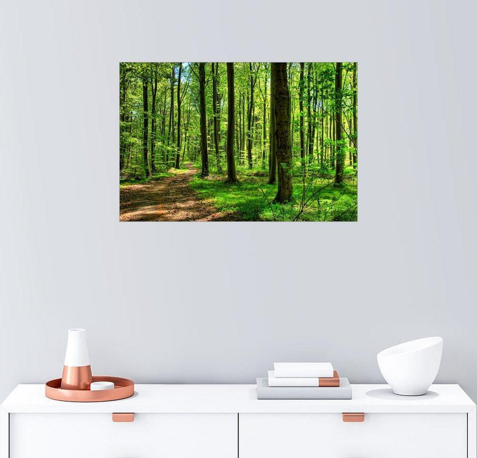 Posterlounge Wandbild »Frühlingsduft Im Wald«