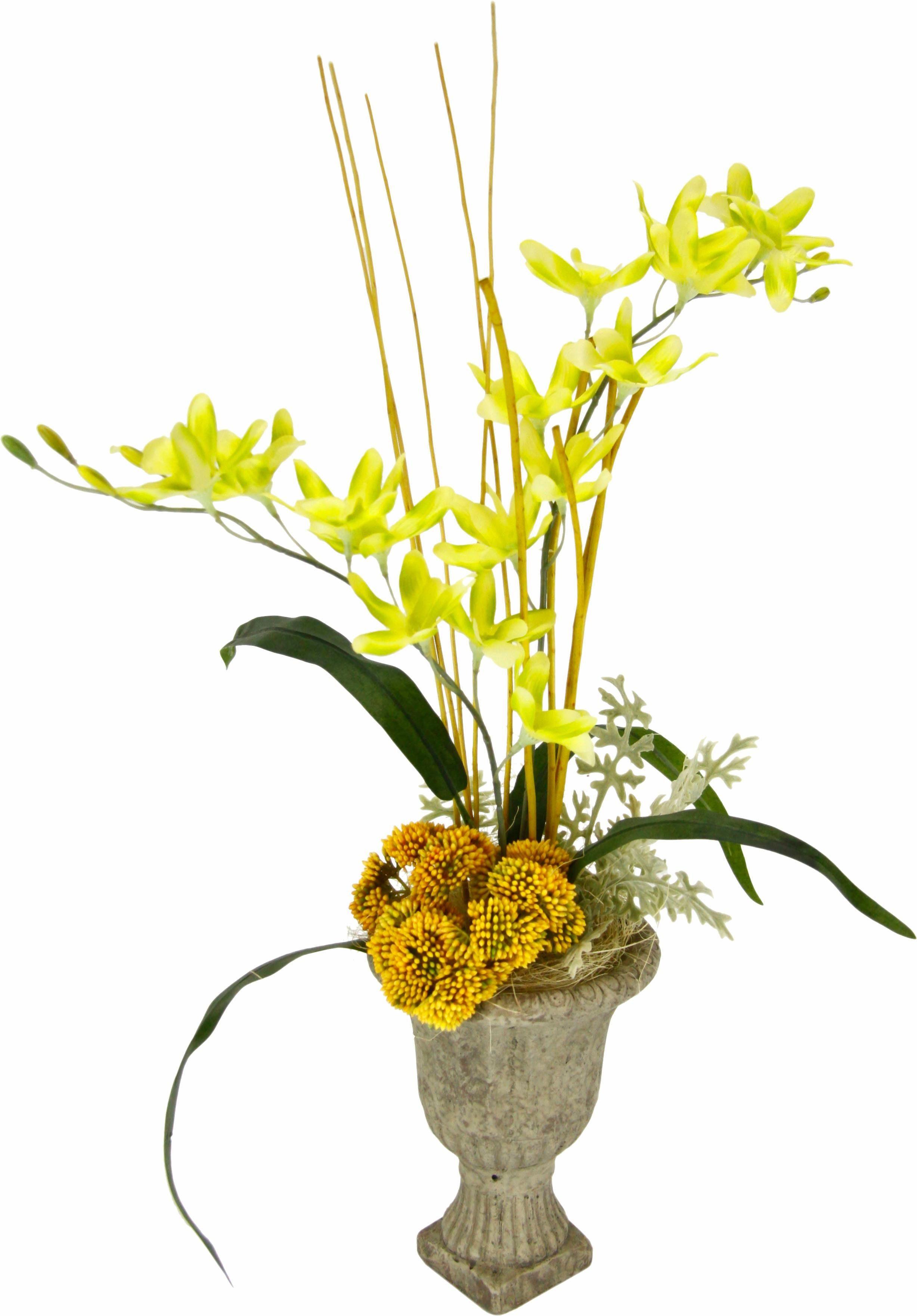 Orchidee i.Keramikpokal 47/24