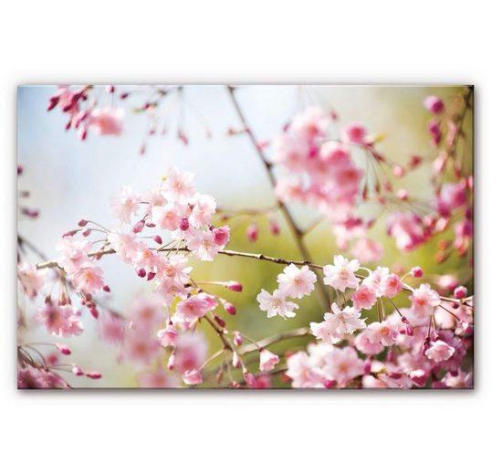 Wall-Art Küchenrückwand »Floral Spritzschutz Kirschblüten«, (1-tlg)
