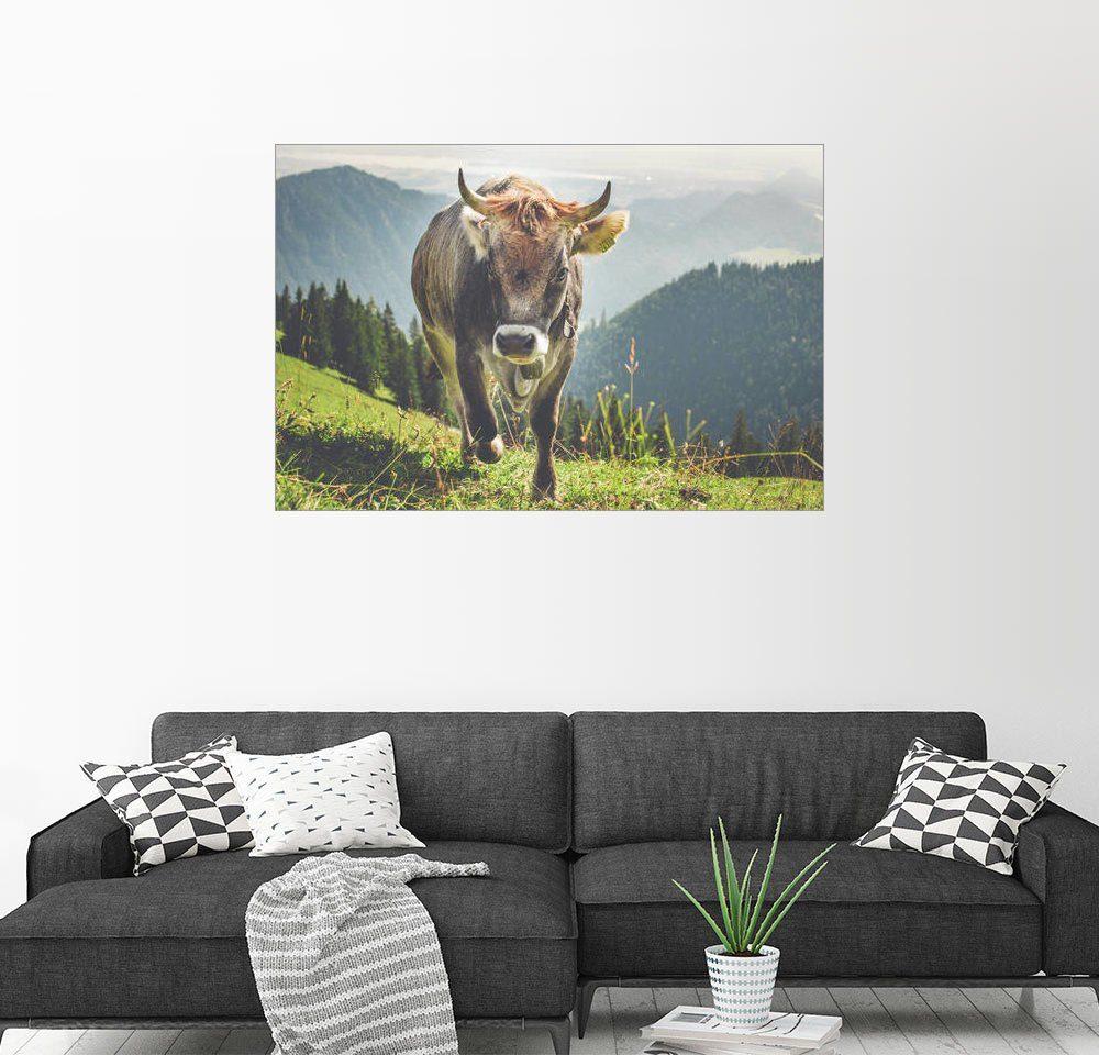 Posterlounge Wandbild - Michael Helmer »Allgäuer Kuh in den Bergen«