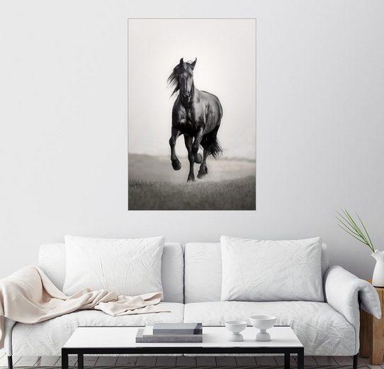 Posterlounge Wandbild - Monika Leirich »Pferd Friese in der Steppe«
