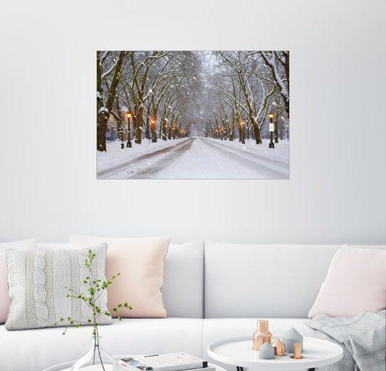 Posterlounge Wandbild - Jamie & Judy Wild »Verschneite Allee«
