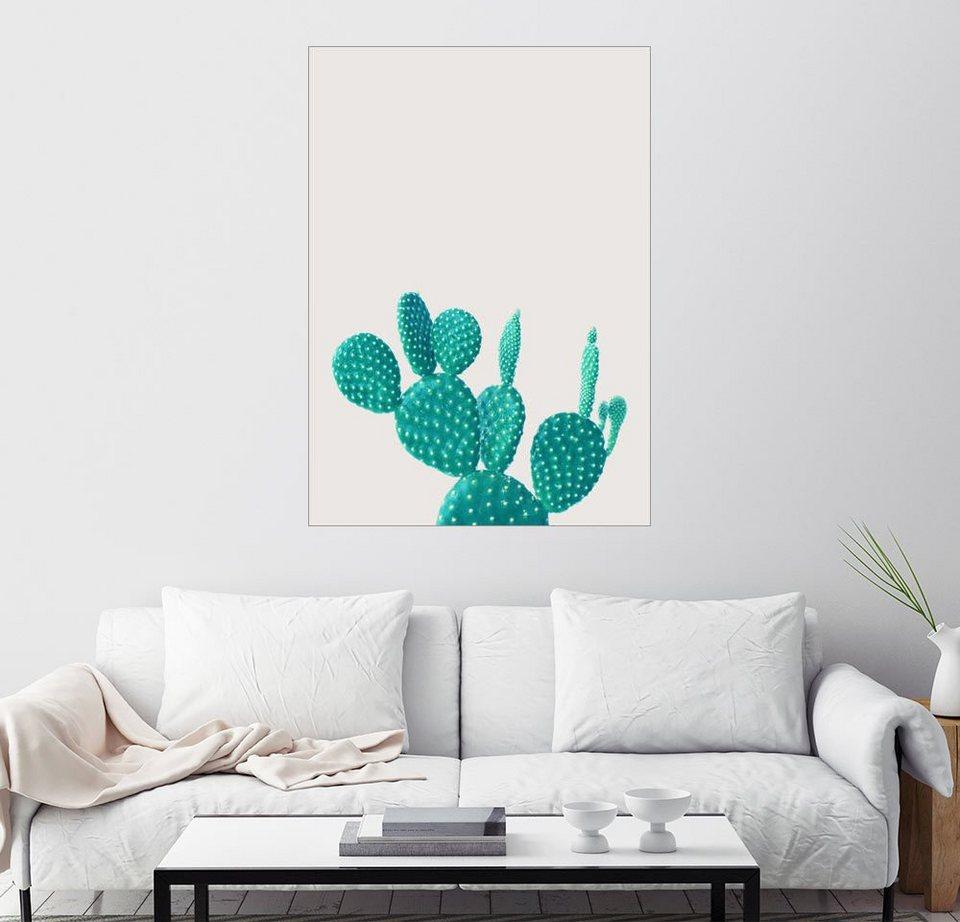 posterlounge wandbild finlay and noa gr ner kaktus online kaufen otto. Black Bedroom Furniture Sets. Home Design Ideas