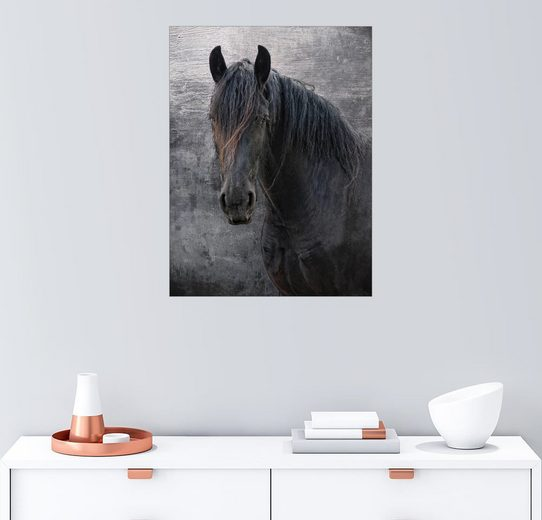 Posterlounge Wandbild - Joachim G. Pinkawa »Friesen-Pferd«
