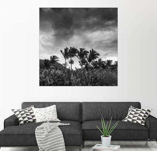 Posterlounge Wandbild - Alex Saberi »Eine stürmische tropische Szene im Paradies v...«