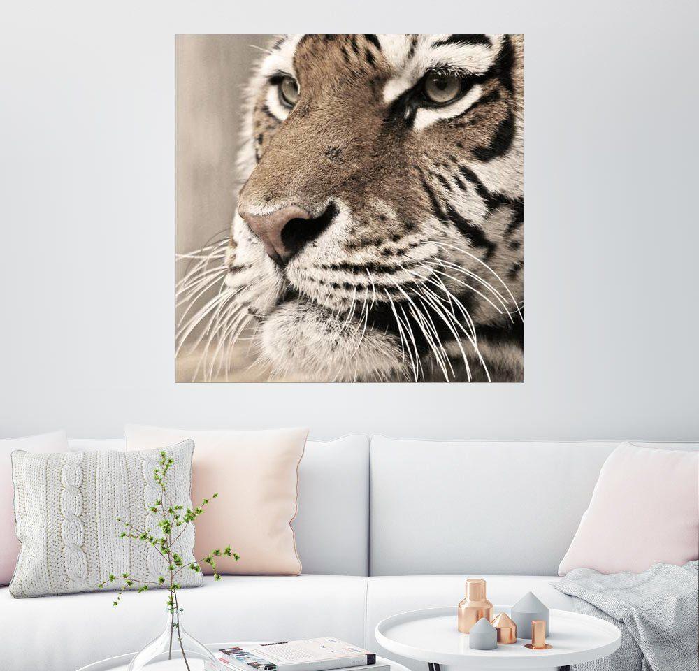 Posterlounge Wandbild - Marcel Schauer »Tigerportrait«