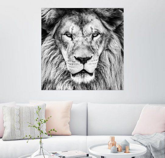 Posterlounge Wandbild »König Löwe - Schwarz Weiß«