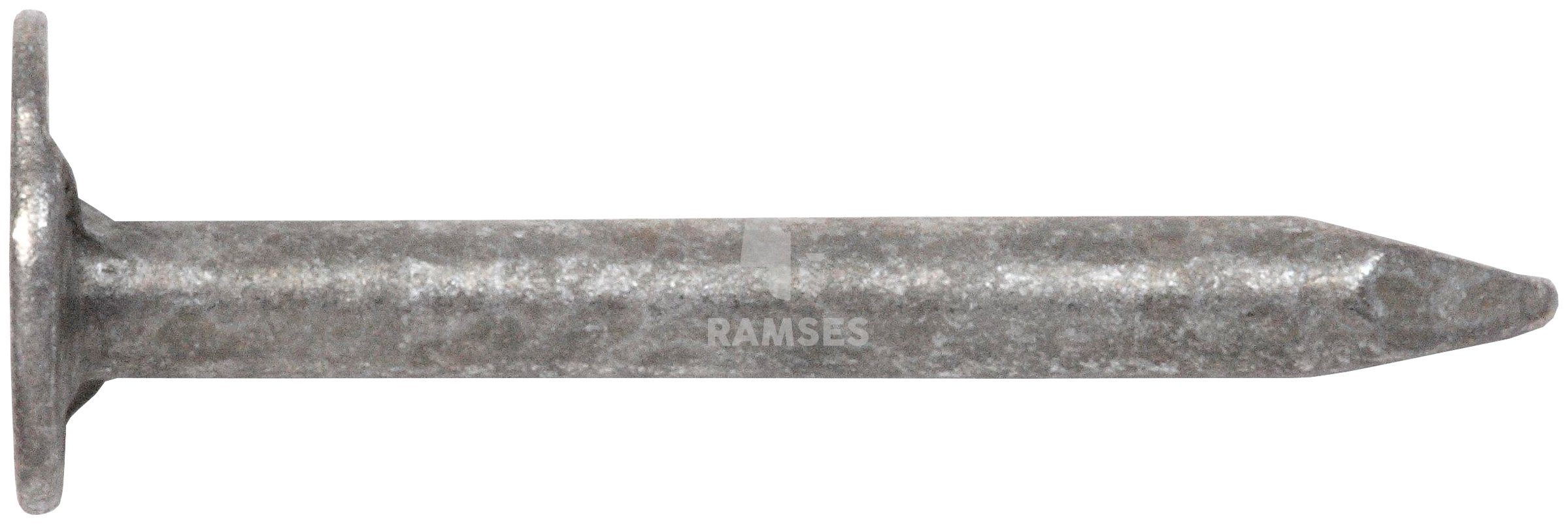 RAMSES Nagel , Dachpappstifte DIN 1160 2,8 x 40 mm Stahl