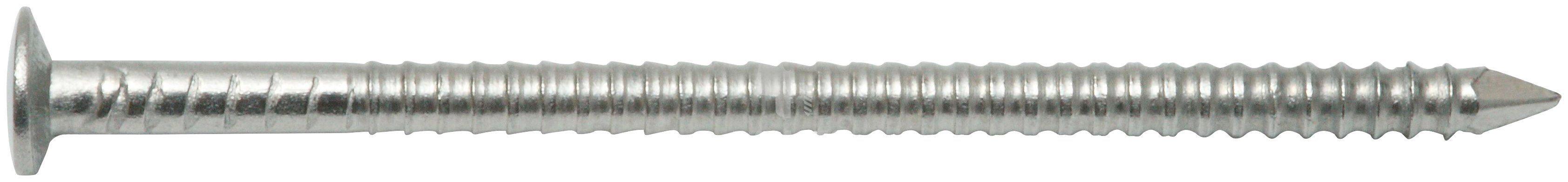 RAMSES Nagel , Linsenkopfnägel Senkkopf 2,3 x 60 mm Edelstahl A2, 200 Stk.