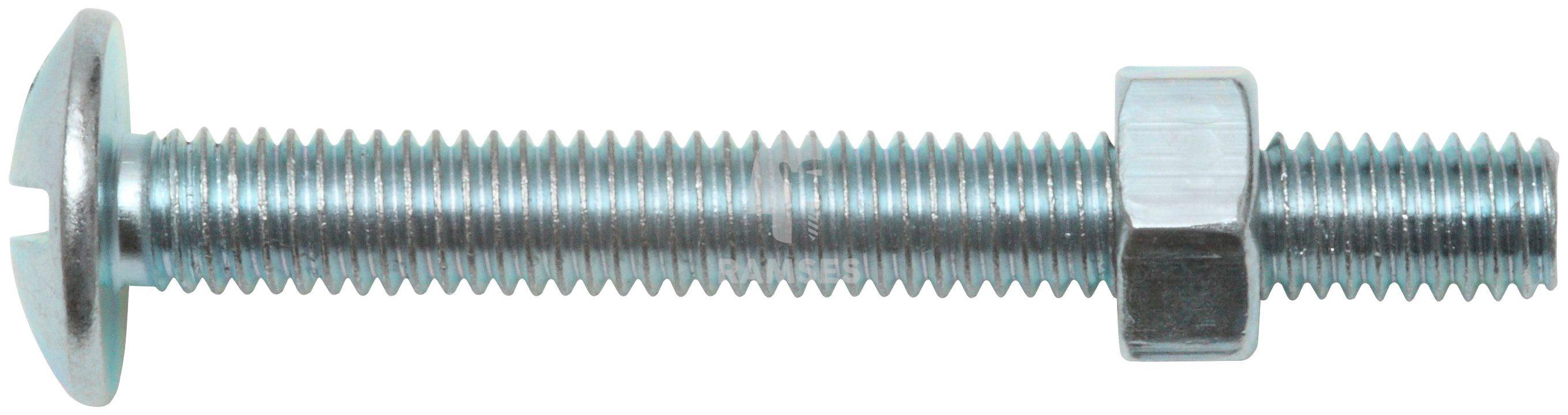 RAMSES Schrauben , Möbelschrauben und Mutter M6 x 40 mm 100 Stk.
