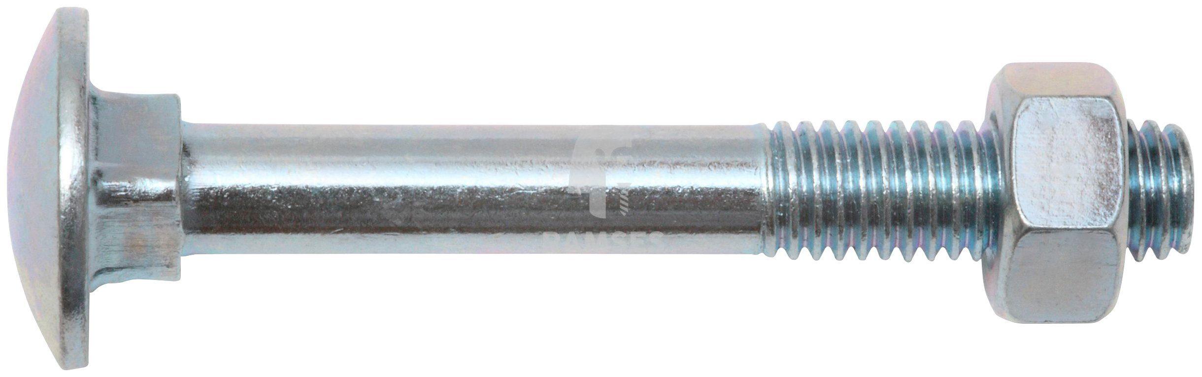 RAMSES Schrauben , Schlossschraube mit Mutter M10 x 100 mm 10 Stk.