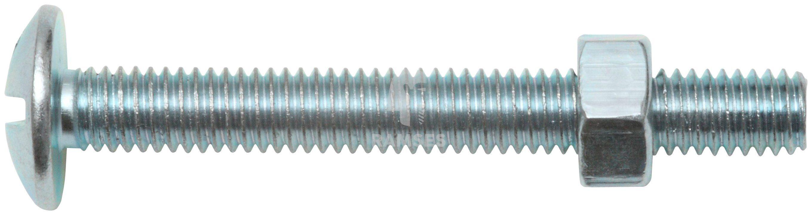 RAMSES Schrauben , Möbelschrauben und Mutter M5 x 40 mm 100 Stk.