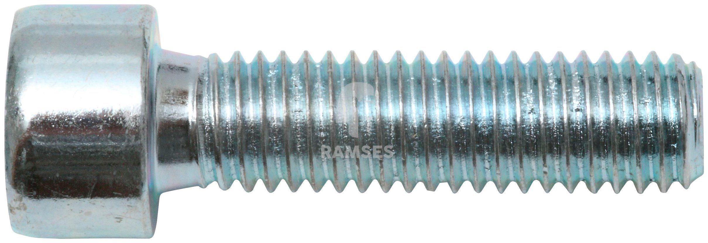 RAMSES Schrauben , Zylinderschraube M6 x 25 mm SW5 100 Stk.
