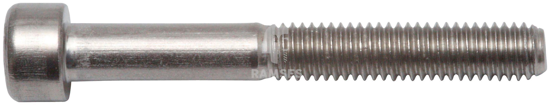 RAMSES Schrauben , Zylinderschraube M6 x 25 mm SW5 50 Stk.