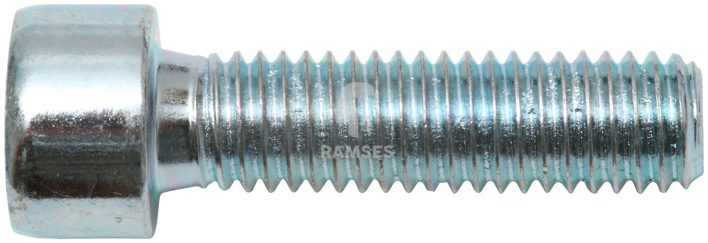 RAMSES Schrauben , Zylinderschraube M6 x 60 mm SW5 100 Stk.