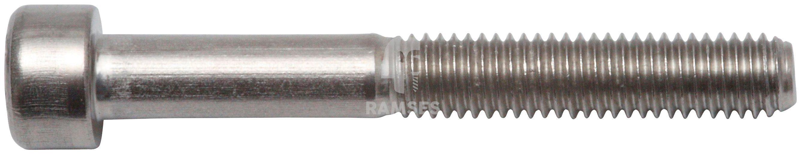 RAMSES Schrauben , Zylinderschraube M8 x 25 mm SW6 40 Stk.