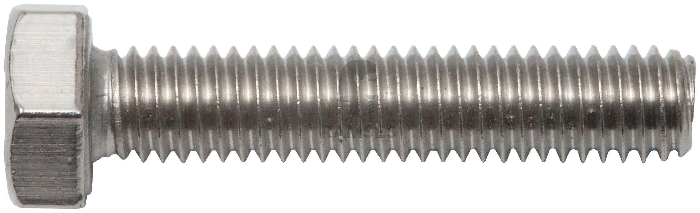 RAMSES Schrauben , Sechskantschraube M10 x 80 mm 20 Stk.