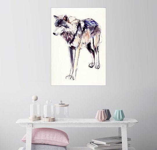 Posterlounge Wandbild - Mark Adlington »Alphawolf«
