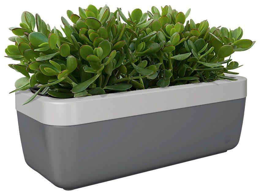 emsa blumenkasten mybox 75 cm kasten granit rahmen alu online kaufen otto. Black Bedroom Furniture Sets. Home Design Ideas