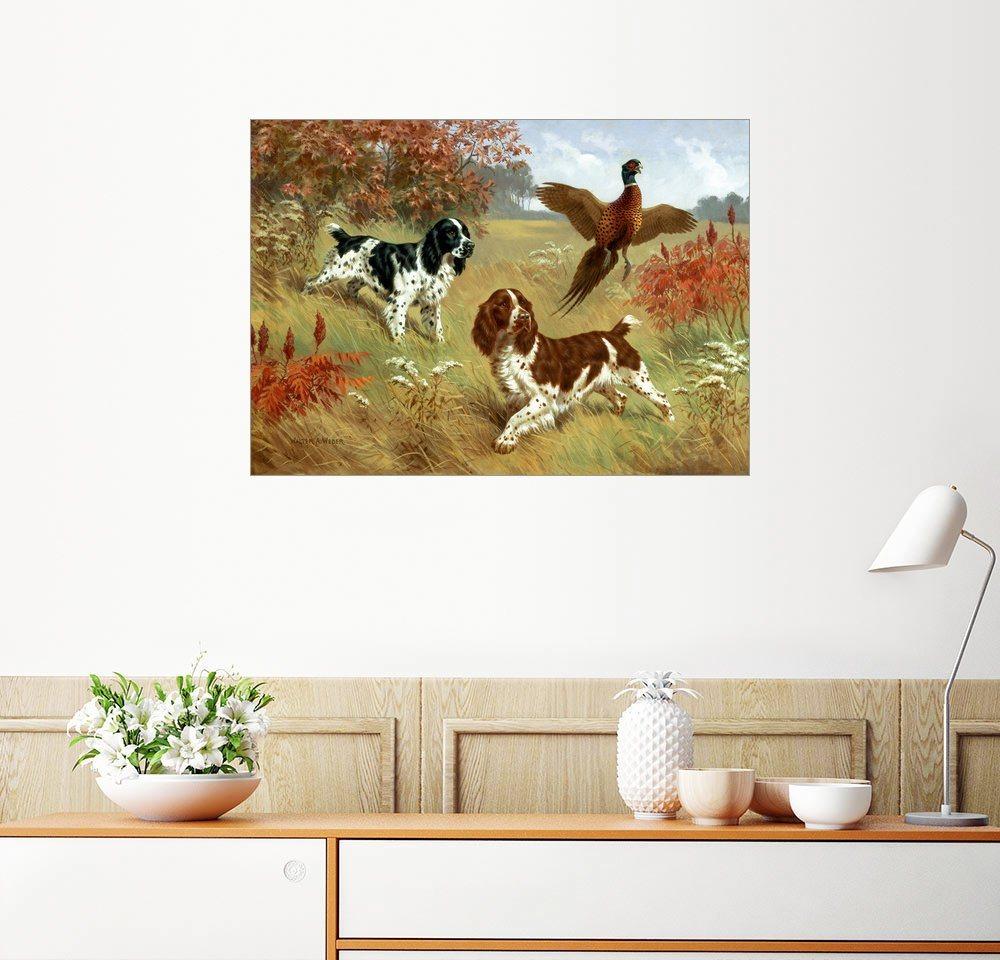 Posterlounge Wandbild - Walter A. Weber »Spaniels jagen eine Fasan«