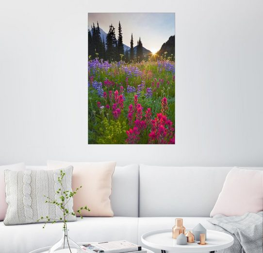 Posterlounge Wandbild - Gary Luhm »Blumenwiese bei Sonnenaufgang«