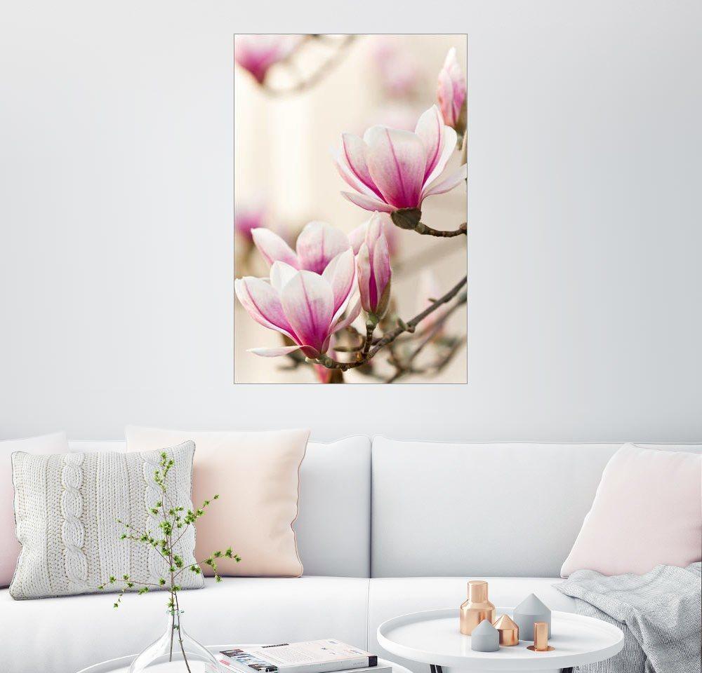 redblue Bilder online kaufen | Möbel-Suchmaschine | ladendirekt.de