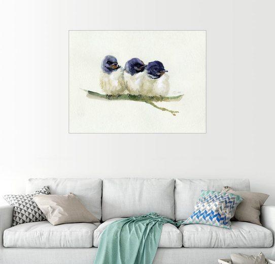 Posterlounge Wandbild - Verbrugge Watercolor »3 kleine Schwälbchen«