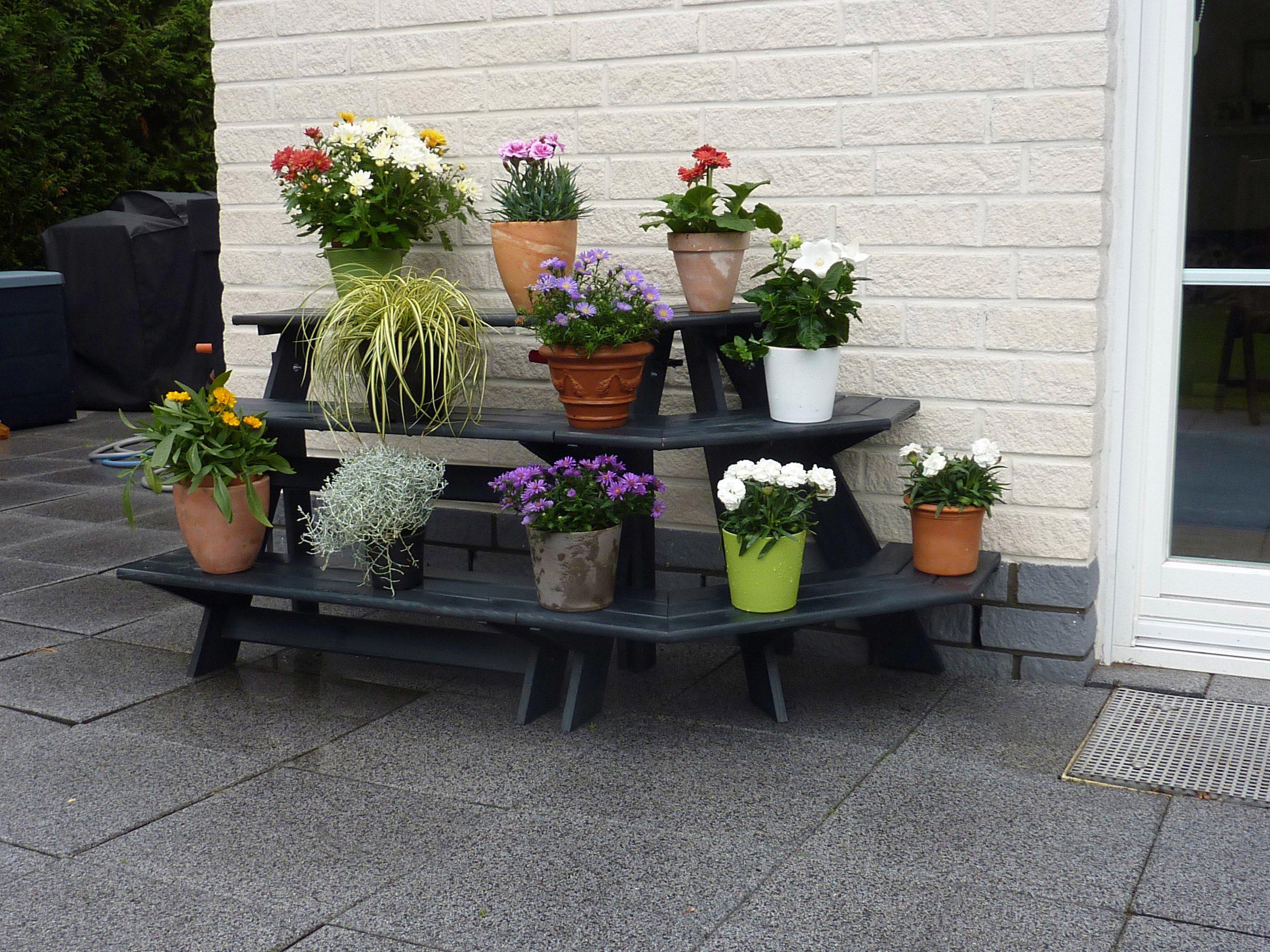 PROMADINO Blumentreppe »Anja«, mit Eckelement, BxTxH: 137x59x62 cm