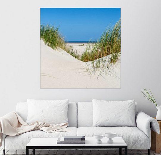 Posterlounge Wandbild - gn fotografie »Dünenlandschaft auf der Nordseeinsel Norderney«