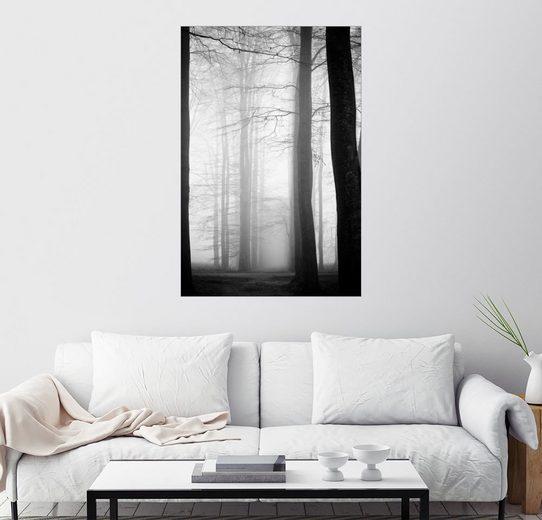 Posterlounge Wandbild »vernebelte Bäume«