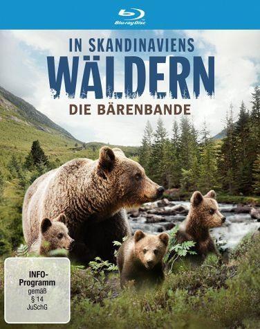 Blu-ray »In Skandinaviens Wäldern - Die Bärenbande«
