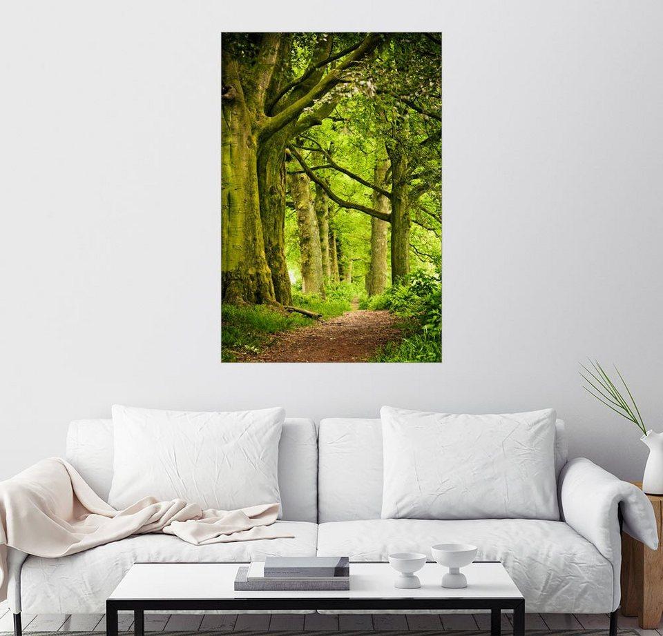 Posterlounge Wandbild »Schöne Frühlingsfarben In Einem
