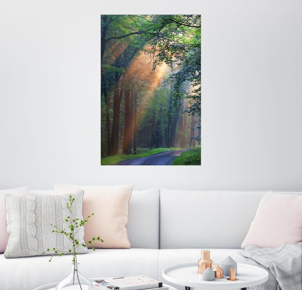 Posterlounge Wandbild - Ellen Anon »Lichtstrahlen scheinen durch den Wald an eine...«