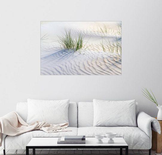 Posterlounge Wandbild - Jürgen Klust »Dünengräser im Sand«