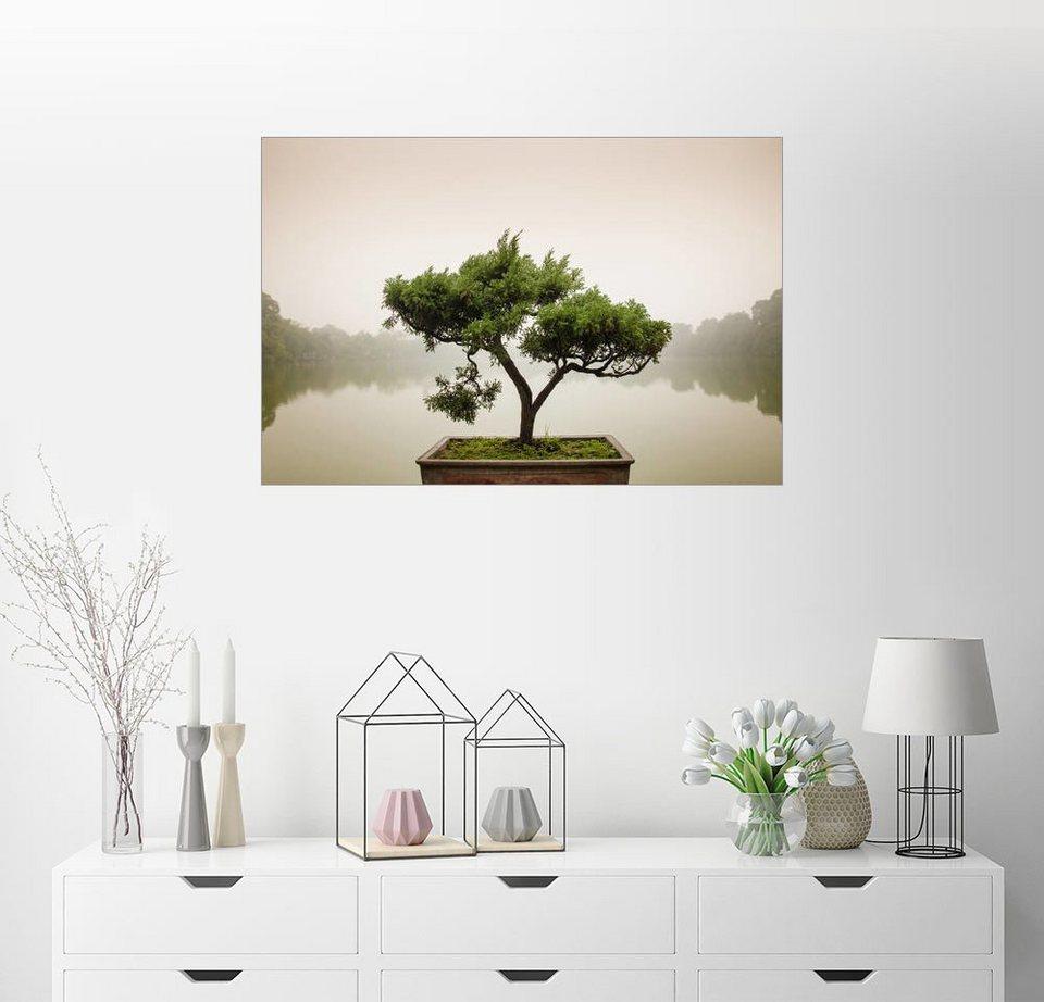 Posterlounge wandbild japanischer bonsai im zen garten for Zen einrichtungsstil