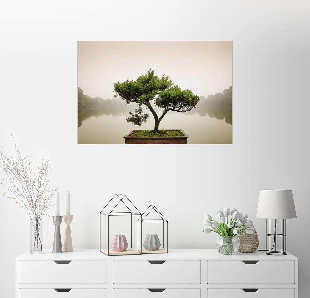 zen garten preisvergleich die besten angebote online kaufen. Black Bedroom Furniture Sets. Home Design Ideas