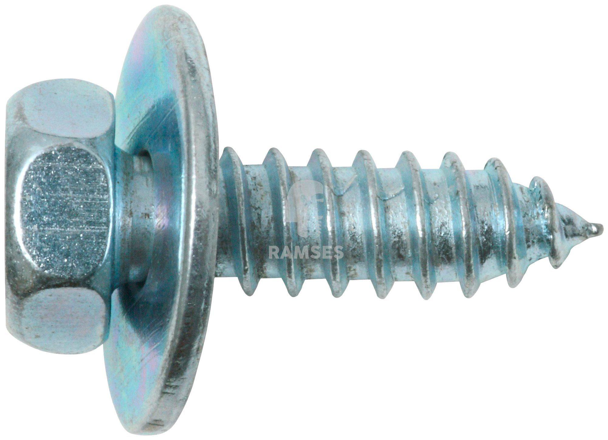 RAMSES Schrauben , Kombi Blechschraube 4,8 x 19 mm SW8 100 Stk.