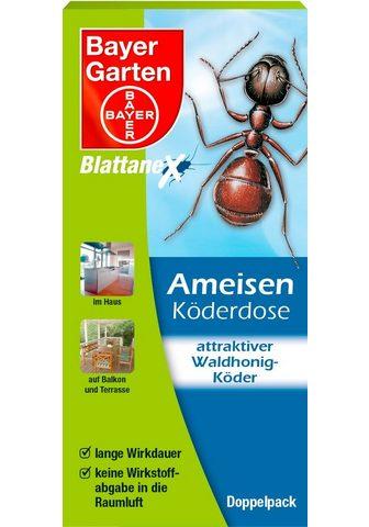 BLATTANEX BAYER GARTEN Haushaltsinsektizide »Ame...