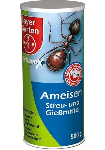 BAYER GARTEN Haushaltsinsektizide »Ameisen Streu- i...