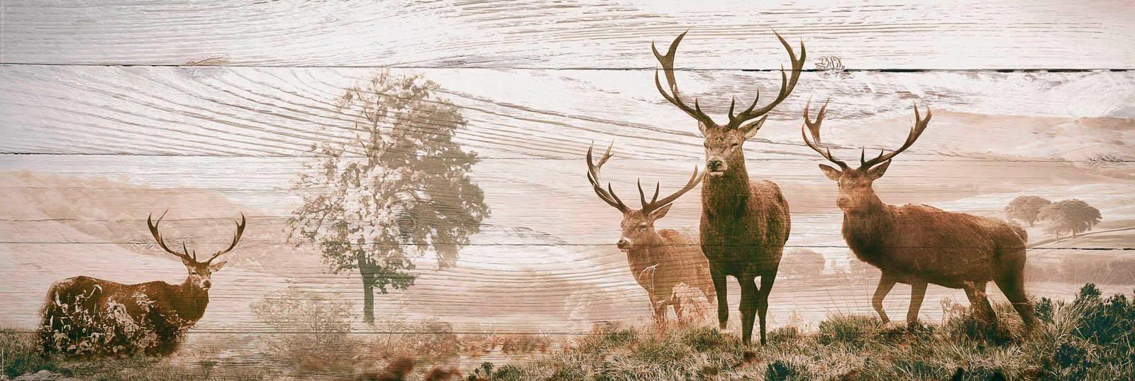Deco Panel »Hirsche« 156/52 cm