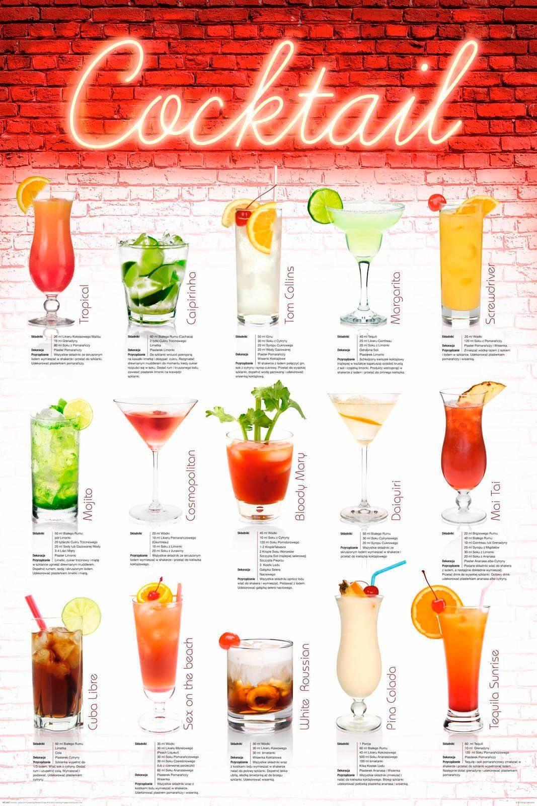 Deco Panel »Cocktails - polnisch« 60/90 cm