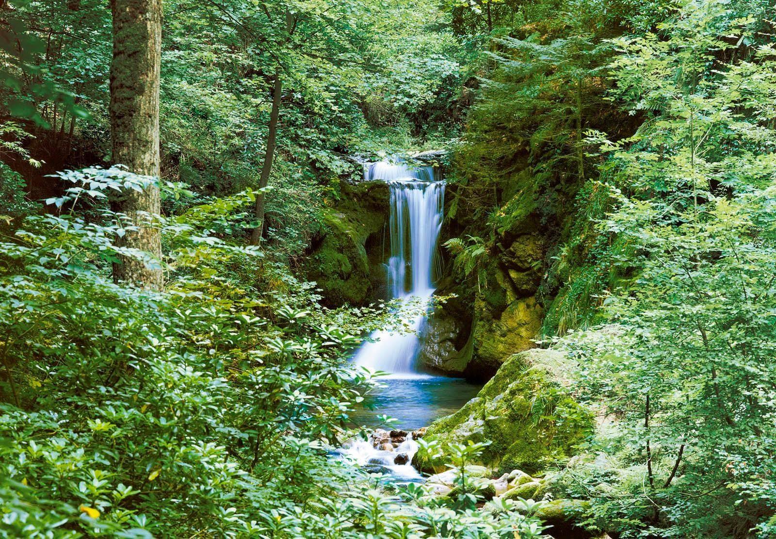 Fototapete »Wasserfall im Frühjahr« 366/254 cm