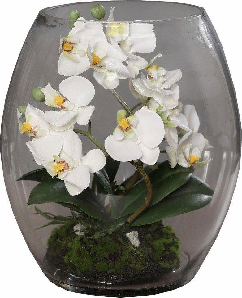 kunstblume orchidee im glas online kaufen otto. Black Bedroom Furniture Sets. Home Design Ideas