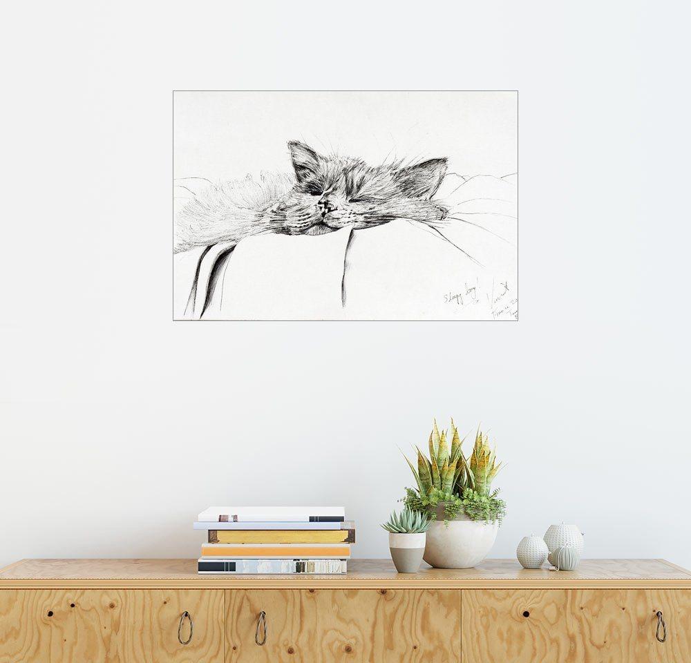 Posterlounge Wandbild - Vincent Alexander Booth »Monty, sleepy boy, ink on paper« | Dekoration > Bilder und Rahmen > Bilder | Holz | Posterlounge