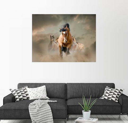 Posterlounge Wandbild »Pferde im Staub«