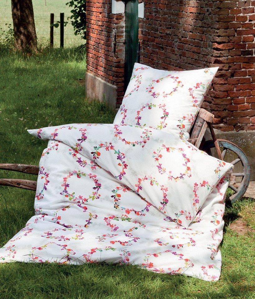 bettw sche big bang janine mit kreisf rmig angeordneten blumen online kaufen otto. Black Bedroom Furniture Sets. Home Design Ideas