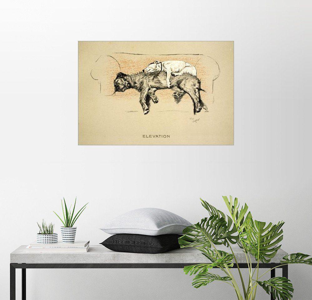 Posterlounge Wandbild - Cecil Charles Windsor Aldin »Erhebung«
