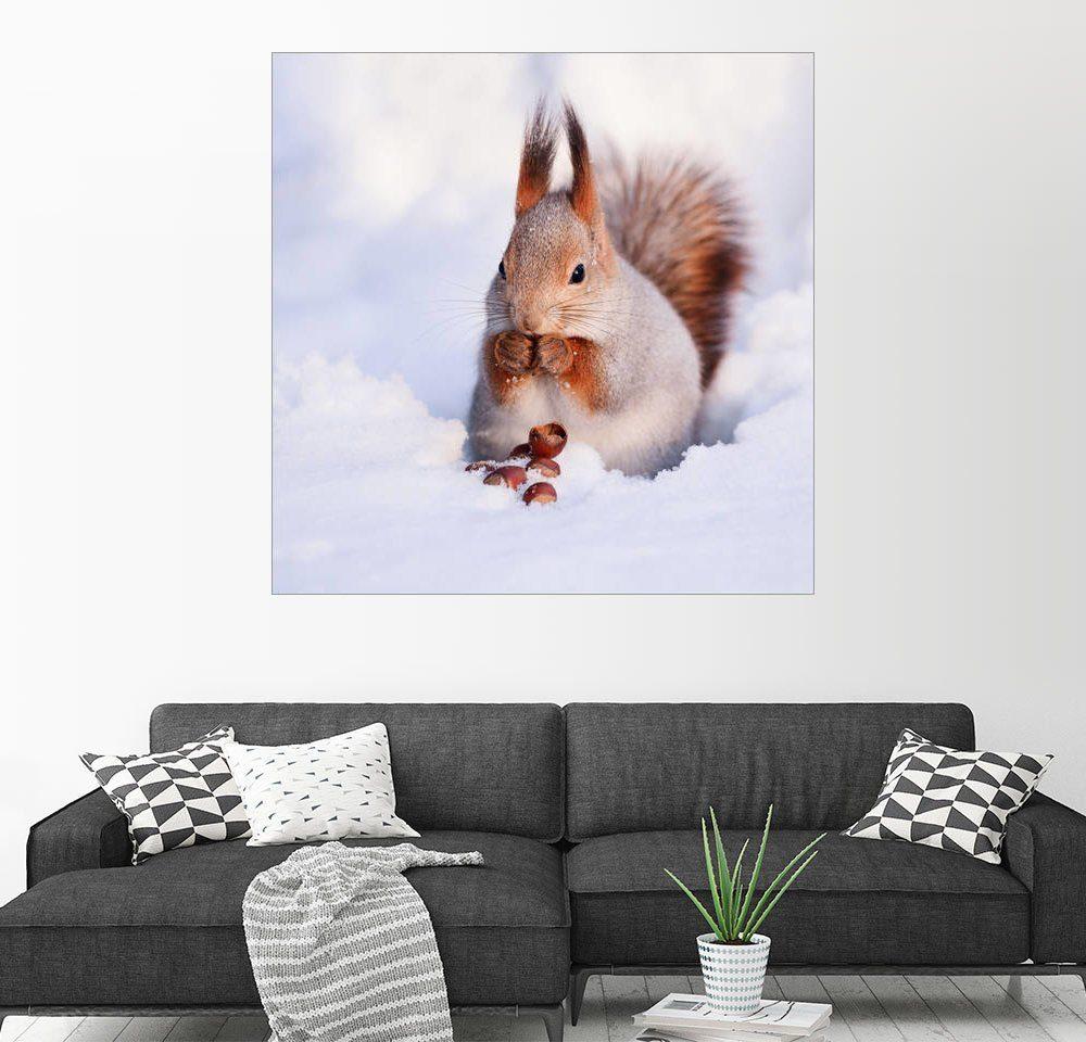 Posterlounge Wandbild »Eichhörnchen im Schnee«